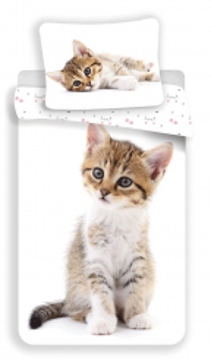 Povlečení fototisk Kitten white 140x200, 70x90 cm
